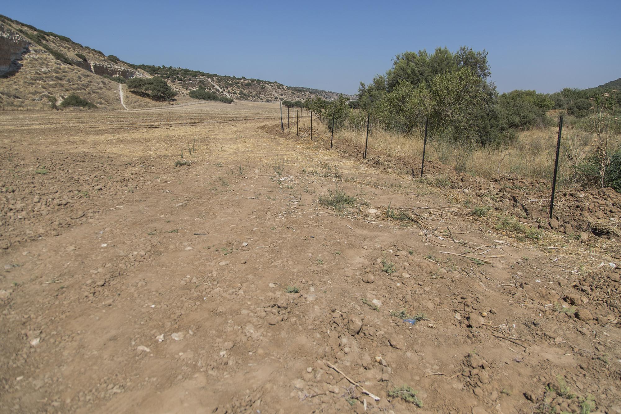 israel-empty-field